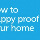 Puppy-Proof Your Home